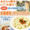 150_sanu_wan_udon